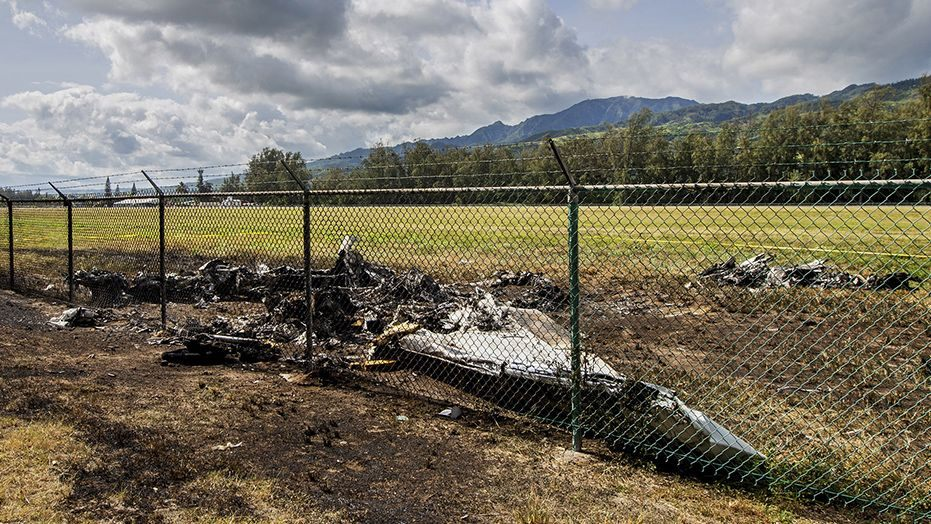 11 Dead in Hawaii Skydiving Plane Crash