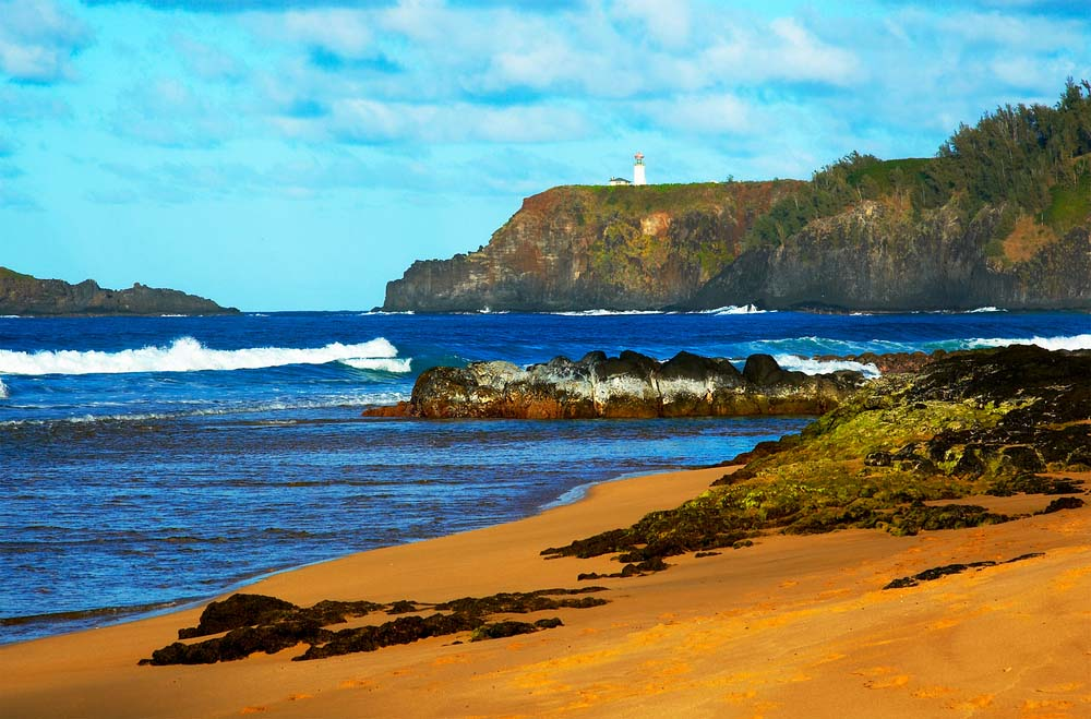 Kauapea Secret Beach Kauai Wedding Officiant