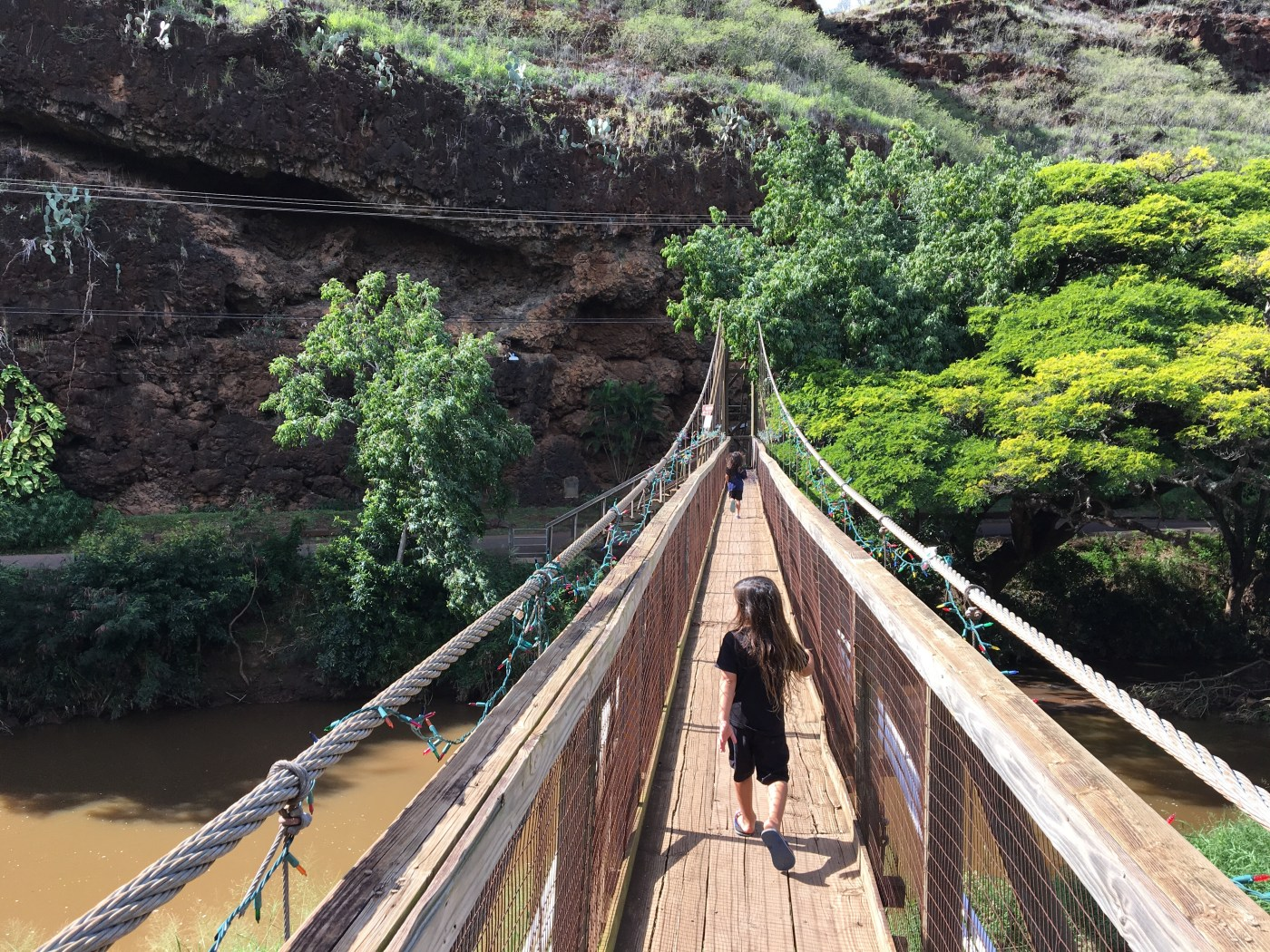 Menehune Ditch And Waimea Swinging Bridge Kauai With Keiki