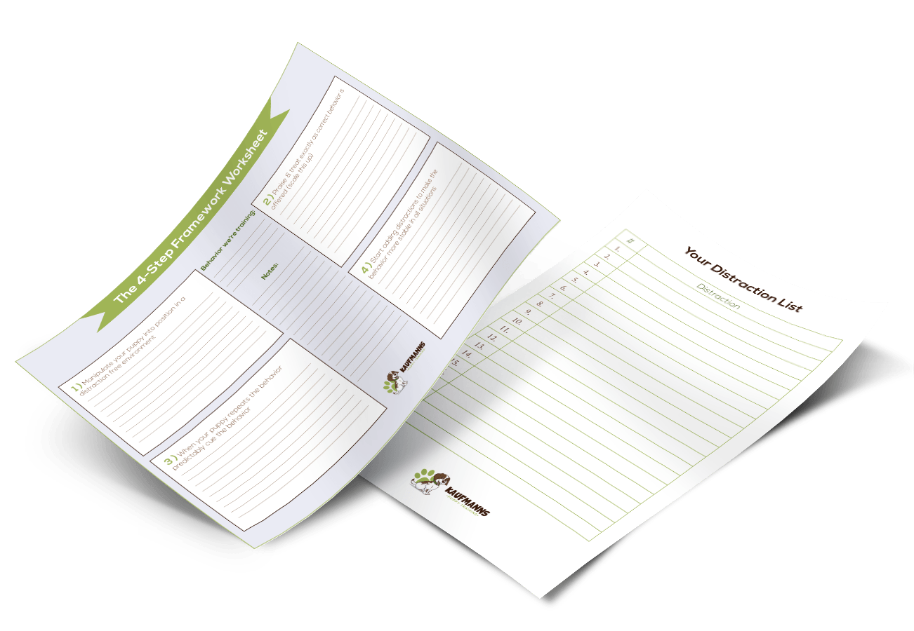 The 4 Step Framework Amp Distraction Worksheets Kaufmann S Puppy Training