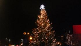 Utenos Kalėdų eglė