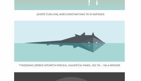 Atskleistas Kauno mitinio Žvėries pavidalas