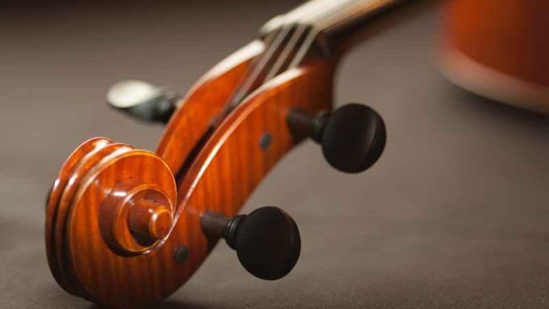 Muzikantai turi žinoti – smuiko kaina neturi būti maža