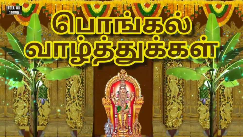 Pongal Hd Images Free Download