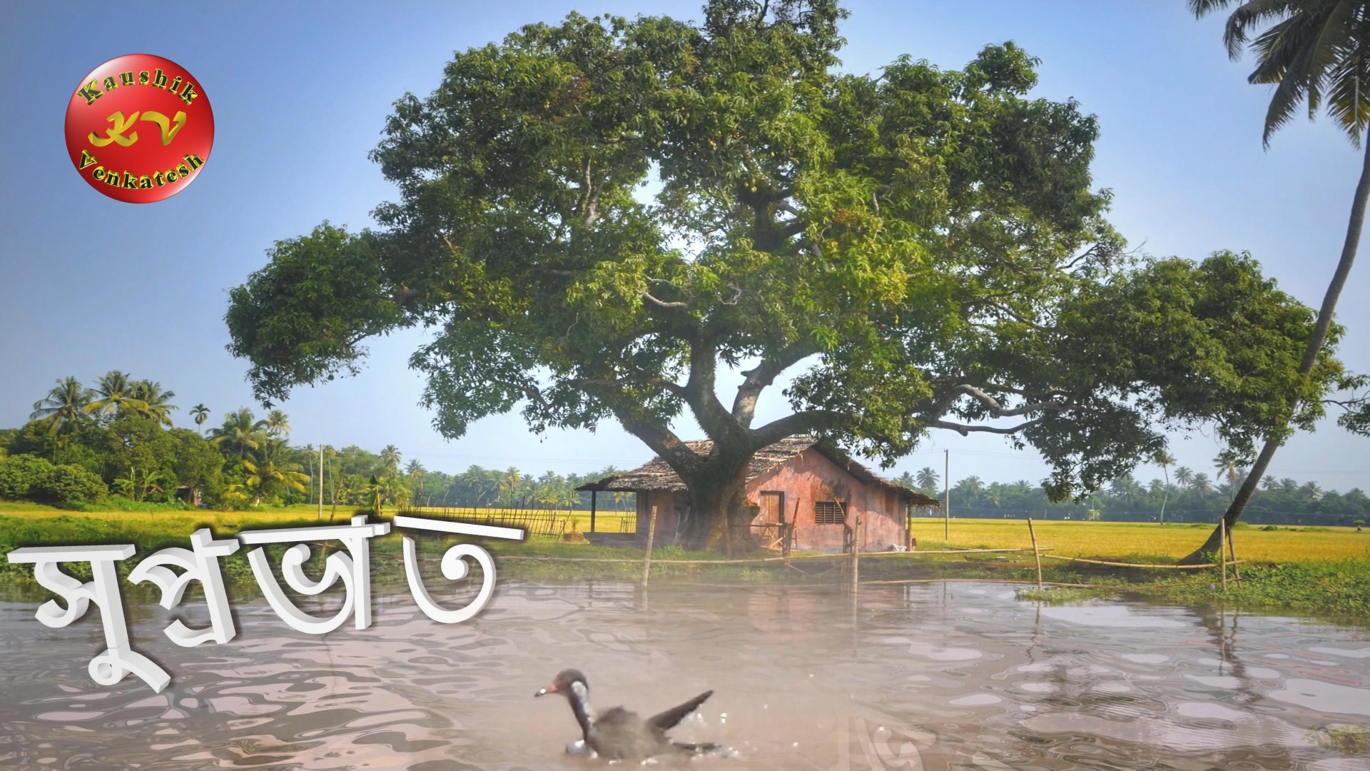 Image of Good Morning Wishes Video in Bengali