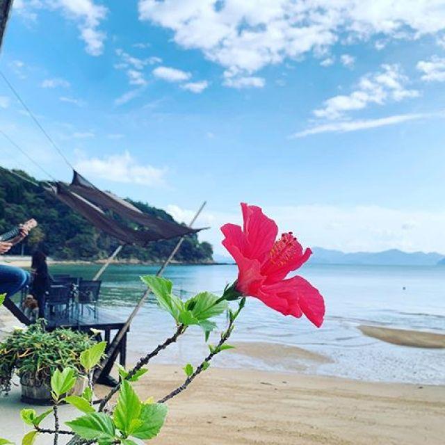 海辺のウクレレレッスン@波輝カフェ。もう11月も終わりなのに、あったかい。天気もよくて気持ちいい〜。 #唄うたいカワムラ