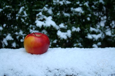 apple crumble cake 01
