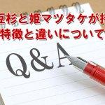 紅豆杉と姫マツタケの特徴についてのイメージ画像