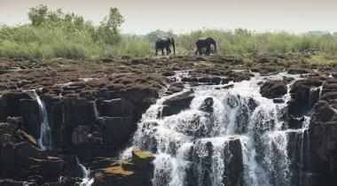 safari nas cataratas vitória