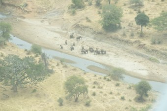 Viajando na Tanzânia