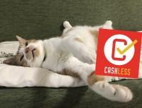 キャッシュレスポイント還元事業の加盟店がだいぶ増えてきた