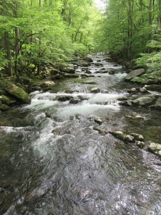 Big Creek upstream