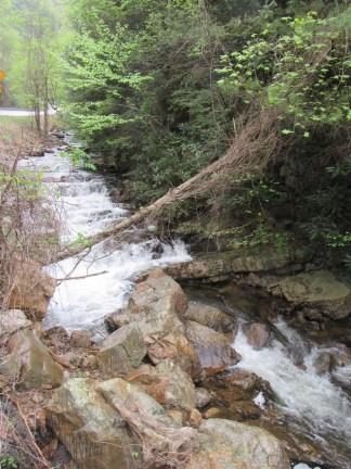 TN creek