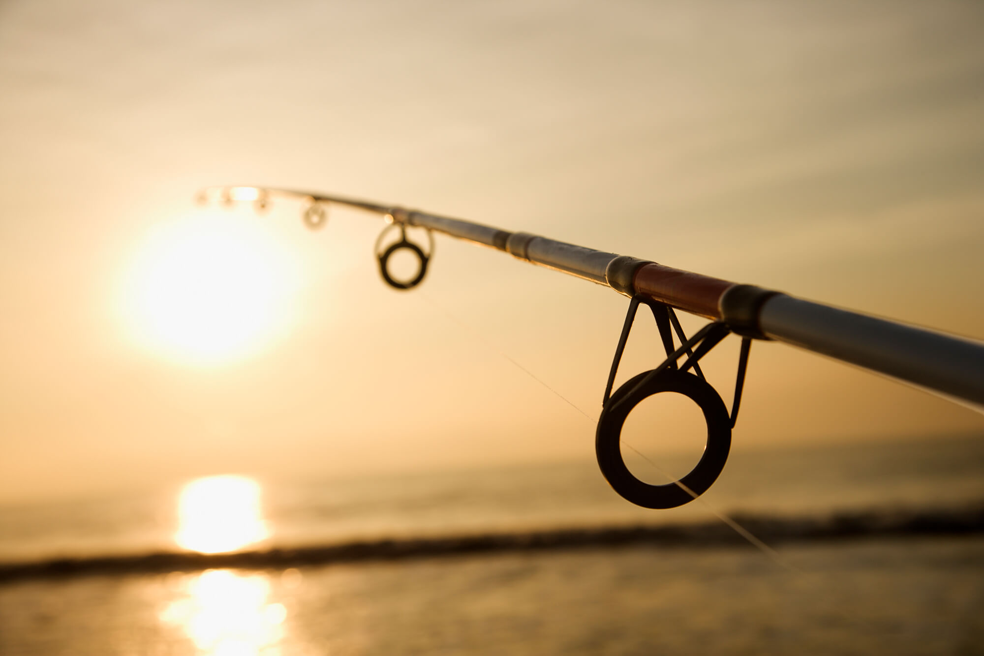 Fishing Rod with sun setting
