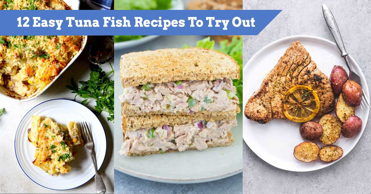 12 Easy Tuna Fish Recipes To Try Out