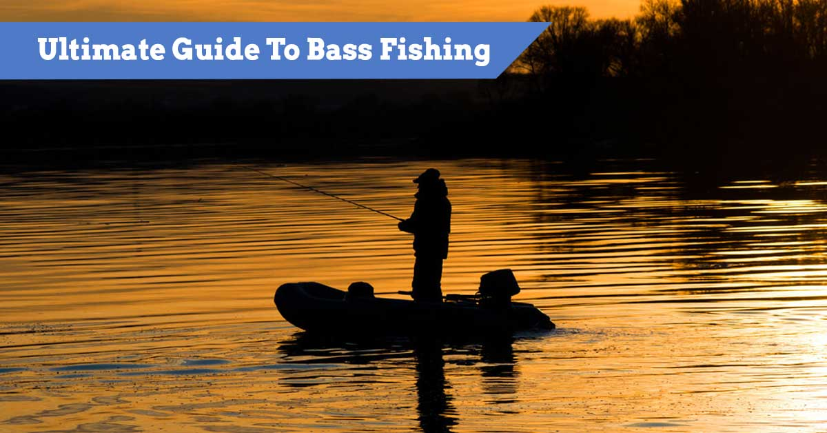 Ultimate Guide To Bass Fishing