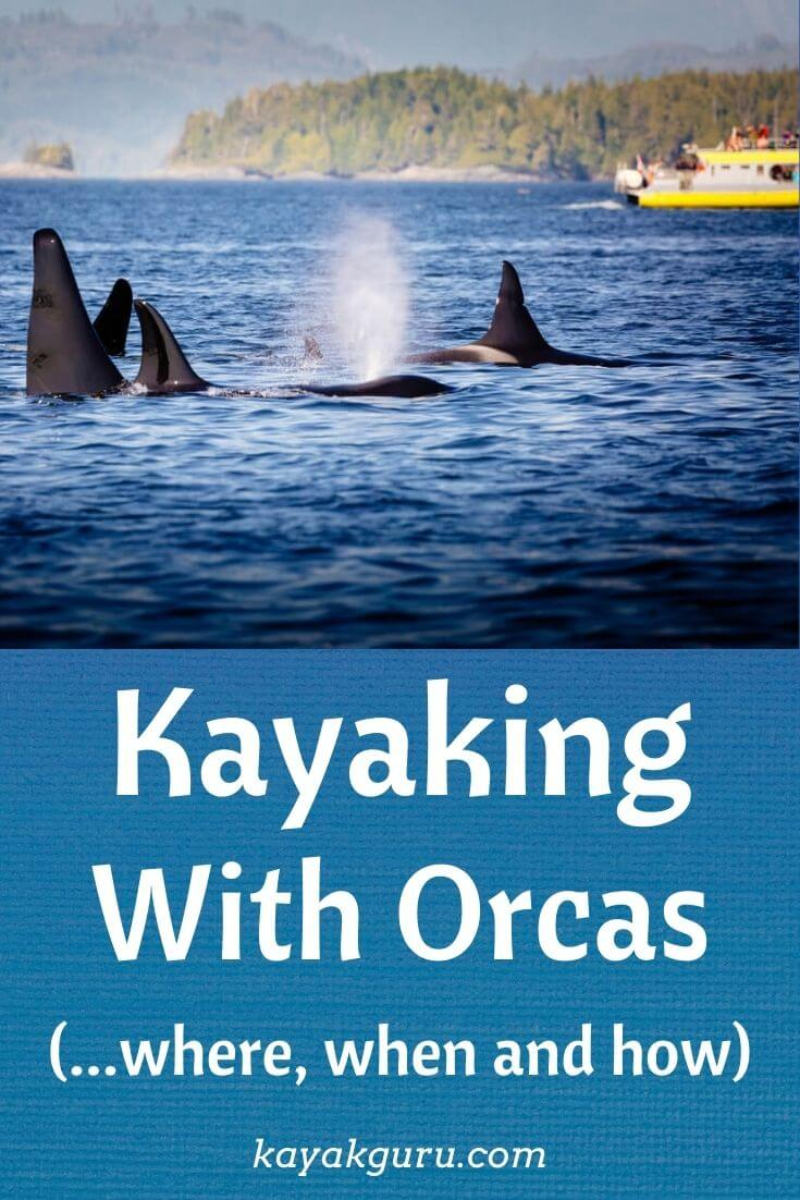 Kayaking With Orcas - Pinterest