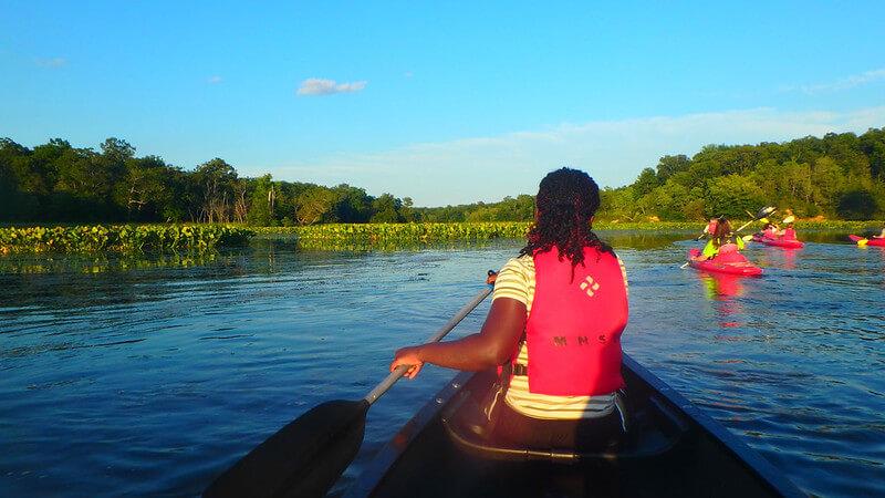 Mason Neck State Park Kayaking