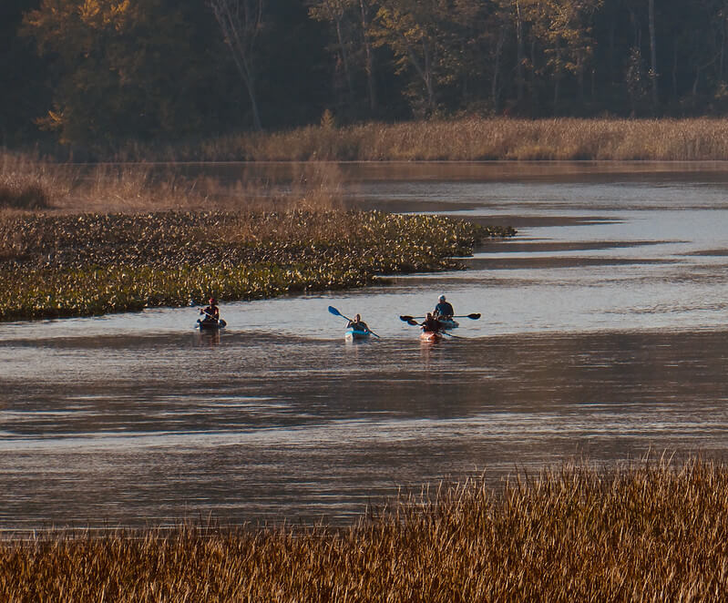 Patuxent River Kayaking