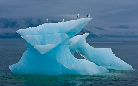 Iceberg drifting