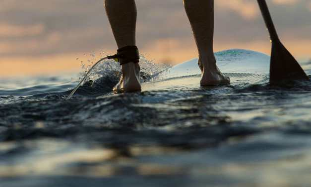 Stand Up Paddling
