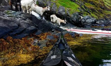 Kayak Travel