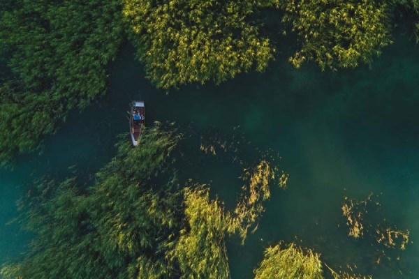 kayak round trip
