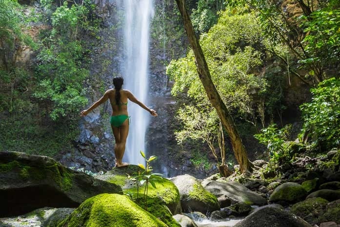 Fall Bird Wallpaper Wailua River Sacred Falls Paddle Amp Hiking Tour