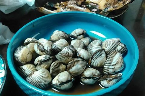サルボウ貝 煮付け