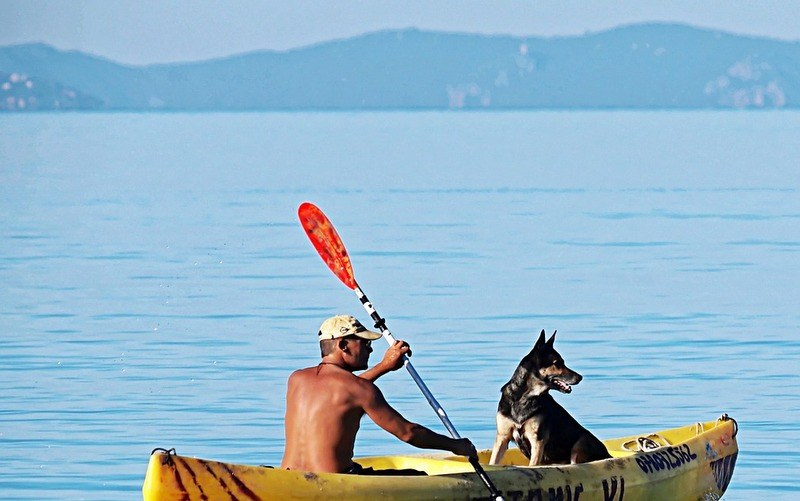 Kayak with dog seat