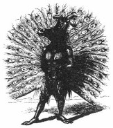 ADRAMELECH - Can take the shape of a mule or peacock, and in ancient times, the people of the Assyrian city, Sepharvaim, sacrificed children to him.