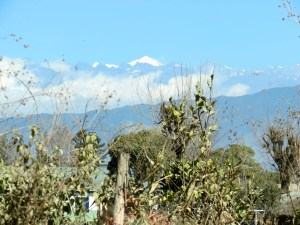 Snow-capped Himalayans in the background