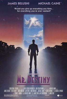 Mr. Destiny.jpg