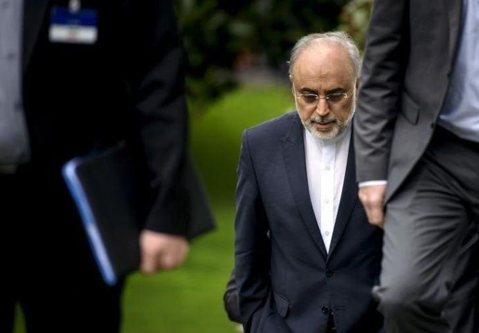 The Head of the Iranian Atomic Energy Organization Ali Akbar Salehi. REUTERS