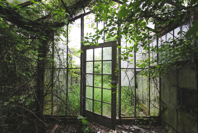 Greenhouse Aesthetic Green Houses