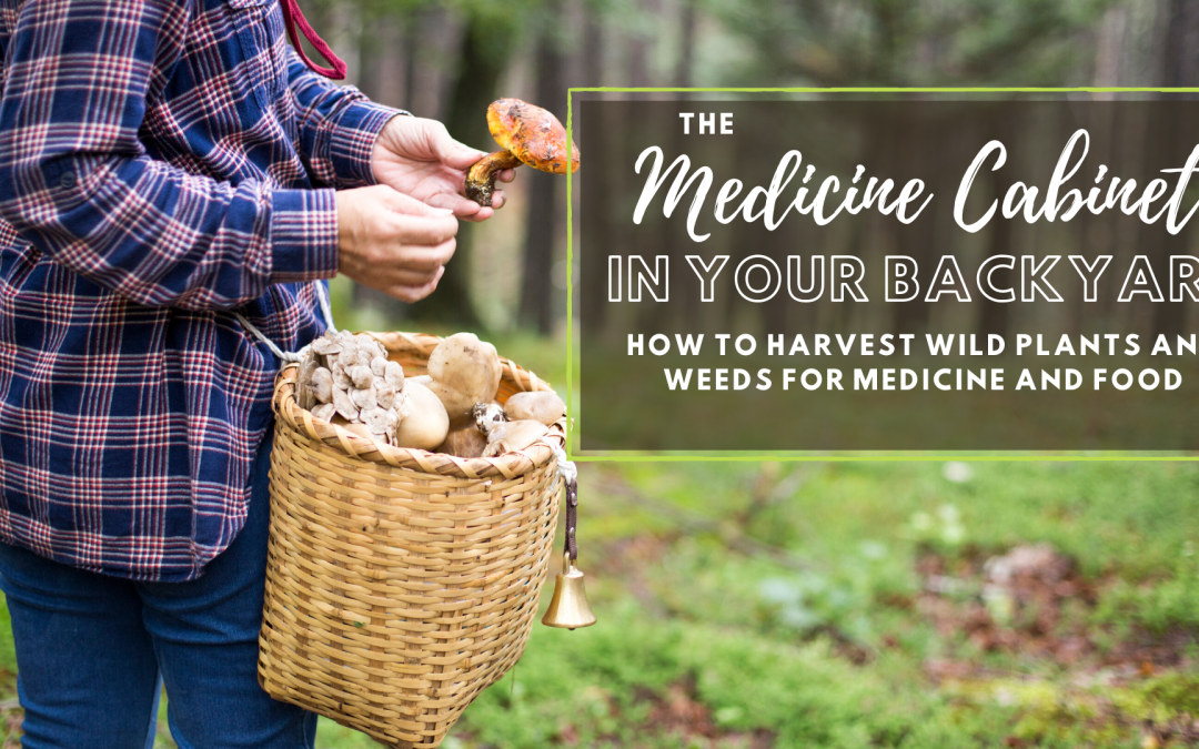 The Proven Medicine in Your Backyard (plus it's FREE!)
