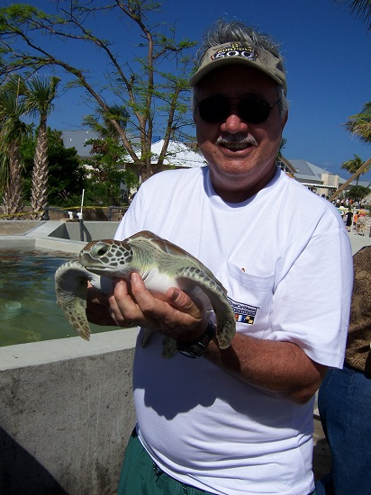 steve-turtle