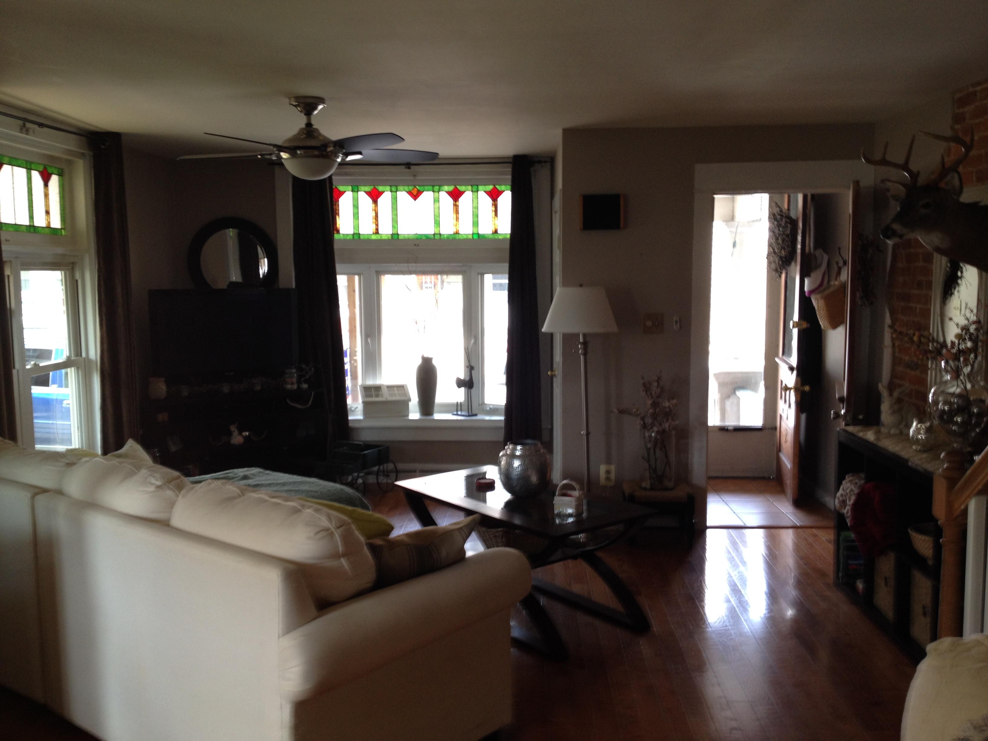 Downtown Living Room Makeover 13  KAY MCLANE DESIGN LLC
