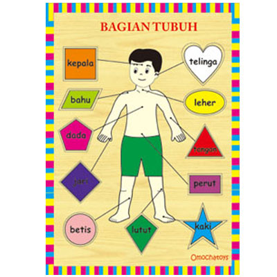 puzzle bagian tubuh - [Best Seller] Aneka Puzzle Dapat 3 Pcs