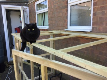 Cat helping with DIY Foldaway / Pop-Up Motorcycle Shed