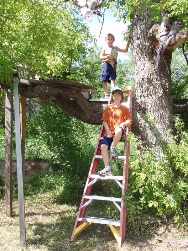 Nephew's Treehouse