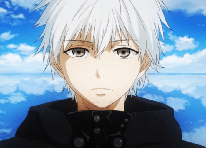 top 5 white hair anime character