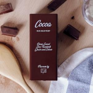 Tierra Audio Cocoa Preamp