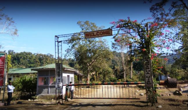 Namdapha National Park, Nameri Birds, Nameri Trekking, Kaziranga National Park