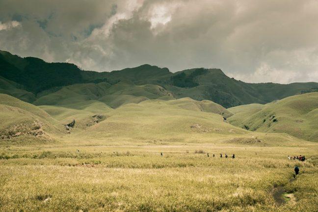 Kaziranga National Park, Dzukou Valley, Nagaland, Hornbill Festival, Mon, Longwa