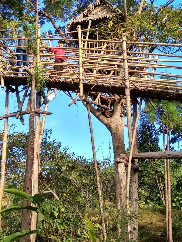 IORA Resort Kaziranga, Kaziranga Hotels, Kaziranga Resorts, Kaziranga National Park