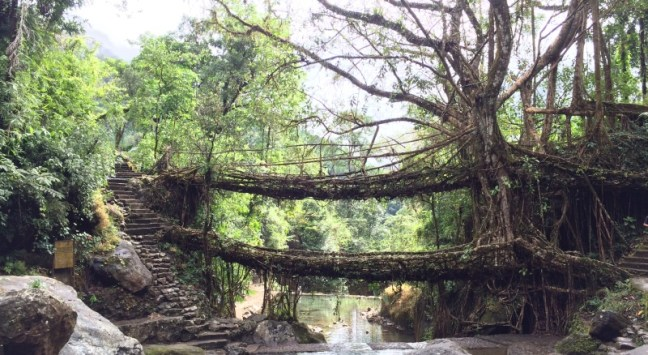Kaziranga National Park, North East India Trekking, Trekking Meghalaya Arunachal