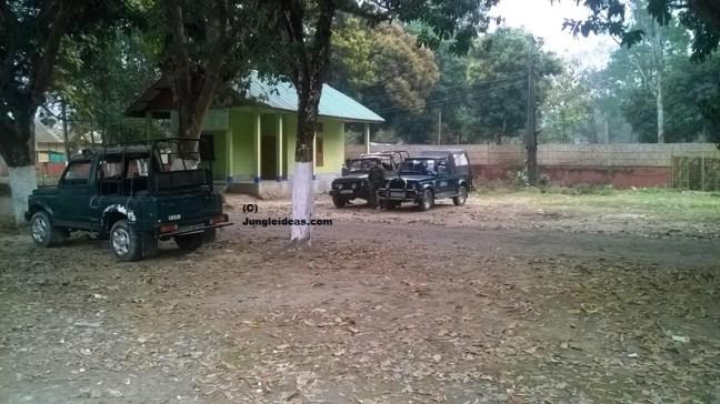 Kaziranga National Park, Manas National Park, Manas Hotels, Manas Safari