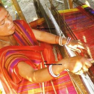 North East India Tribes Tour, Kaziranga National Park, Nagaland Arunachal Tribes