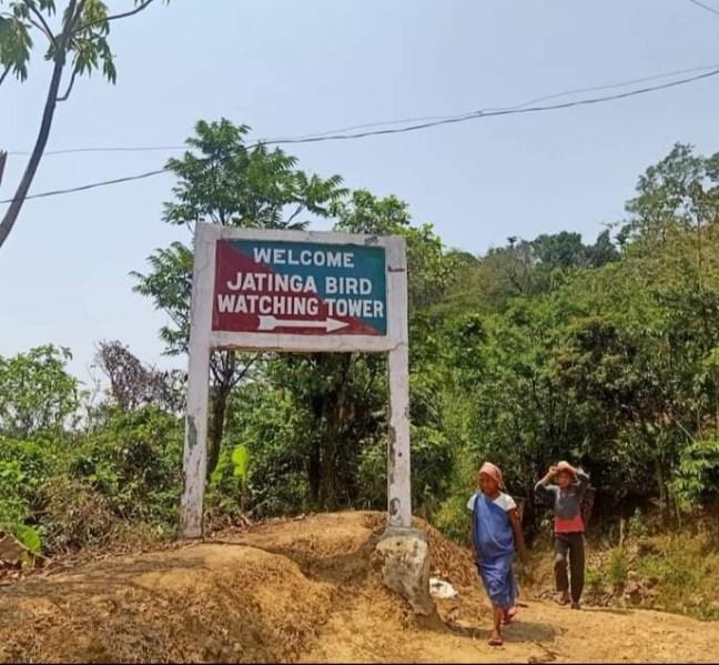Jatinga Valley, Jatinga Bird suicide, Jatinga visit, Haflong, Kaziranga